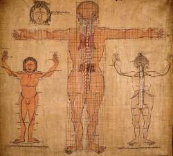 тибетский анатомический атлас